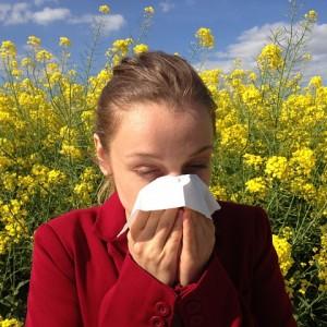 las alergias por acaros